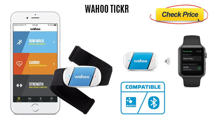 Wahoo-TICKR-large-wearable heart monitor chest strap