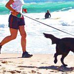 dog-fitness-tracker