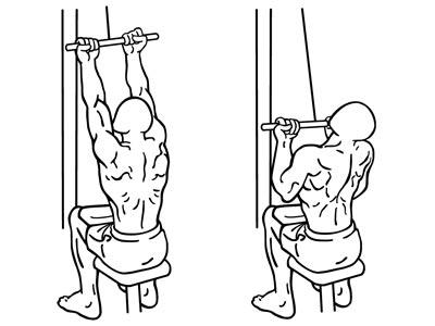 reverse grip lat pulldown