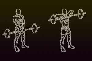 Row Exercise Variations For A Strong Back