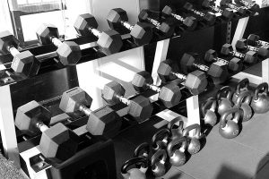 Read more about the article Are Dumbbells Worth Buying?