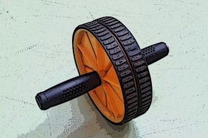 Read more about the article Does the Exercise Wheel Really Work?